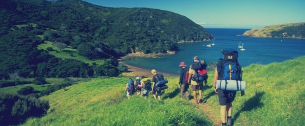 Photo of هاجر إلى نيوزلندا مجاناً!!