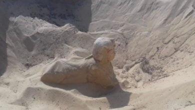 "Photo of مصر.. العثور على تمثال ملكي على هيئة ""أبو الهول"""