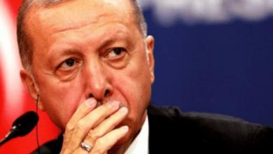 "Photo of برلماني ألماني: أردوغان ""قلق"" من محاكمة دولية لدعمه ""داعش"""