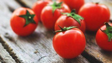 Photo of الطماطم لتحسين الخصوبة.. دراسة تكشف العلاقة الصحية