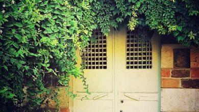 Photo of حارس الذكريات.. خلف مزلاجه تختبئ أسرار البيوت
