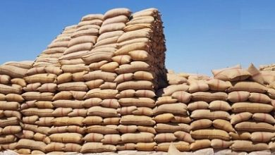 Photo of باخرة أكياس خيش لحلّ مشكلة النقص لدى مزارعي القمح خلال 10 أيام