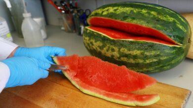 Photo of العلماء الصينيون ينجحون في زيادة حلاوة البطيخ