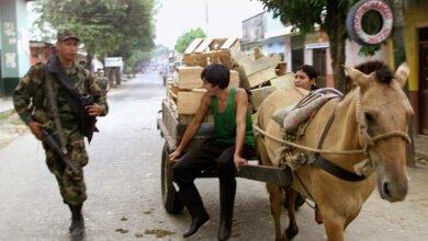 Photo of فضيحة في كولومبيا.. إطعام تلاميذ المدارس وجبات من لحوم الخيول والحمير